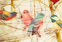 ~ Motif | Bird / Creatively presented birds