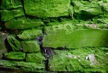 colori: verde & c.