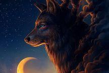 волк/wolf