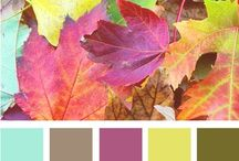 Color Schemes / Color Scheme for a bedroom, living room, bathroom or kitchen
