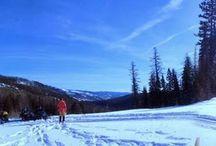 Bighorn Adventures: Backpacking
