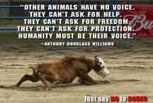 stop dierenleed