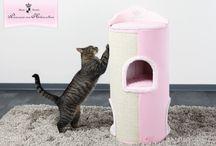 Cat Princess /Katzen-Prinzessinnen/ Gato Princesa/ Gatti principessa / Lifestyle for Cat Princesses!