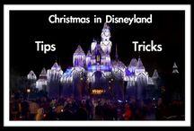 Disneyland dec 2014