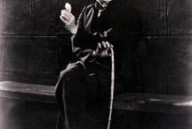 Chalés Chaplin / Maestro