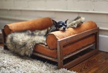Dog lounge bed