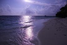 Sea and beaches