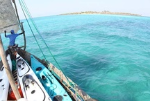 Come Sail Away..... / Wind and Salt in my hair........ a sun kissed nose.......... sailing the big blue sea..........b l i s s      Ibo Island Lodge is the ONLY operator to offer fully guided tailor made mobile island hopping dhow safaris!!!