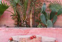 pink stucco house