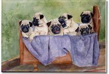 Pugs / by Debbi Odell Sebris