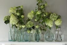 Bottle florals