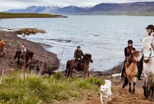 Tour operators in Iceland