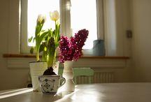 Hjemme hos mig / Denne opslagstavle består af billeder af mit eget hjem. Små og store detaljer og ideer.