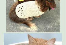 Oblečky na Zvířátka