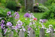 bloemen en tuinen