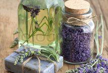 Lavender / Beautiful, aromatic lavender