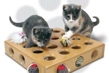 Interactive Puzzle toys for Cats