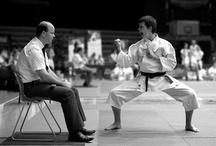 Karate a jiné