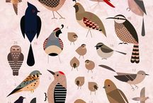 Birdies / Bird illustrations and images