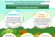 Landscaping trends of 2018