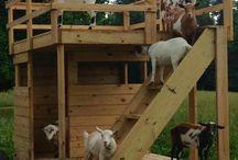 Farm shelters