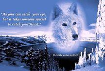 Λύκοι