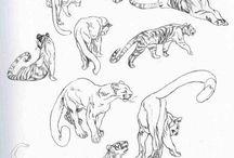 Рисунок животные