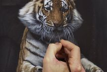 Tiger / Drawings and illustrations of tigers