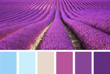 Color / Pantones, Copic, otro esquemas de color puro y duro