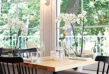 Das perfekte Frühlingsfest = Spargelfest / Frühling bedeutet endlich wieder draußen sein, die Sonne genießen und frischen, leckeren Spargel essen! Freuen Sie sich auf ein wunderbares Frühlings/Spargelfest im Prinz Myshkin Garden!