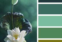 colour pallets