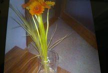 kytky od manžela