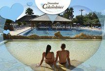 Offres spéciales - Domaine du Colombier / Découvrez les offres spéciales du Domaine du Colombier !  Discover the special offers of Domaine du Colombier! Ontdek de speciale aanbiedingen van Domaine du Colombier! Entdecken Sie die Sonderangebote von Domaine du Colombier!