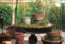 Cloches and Bell Jars