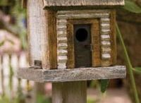 Birdhouses, Cages, and Feeders / by Ginelle Walker-Ward