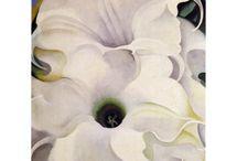 Bilder/Blumen