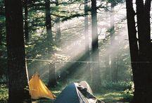 KAMP Ormanlar doğa kamp