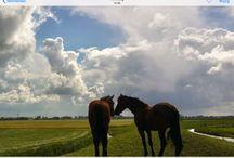Breda.......nederland / Fotos