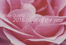 Rose Quartz and Serenity / Celebrating Color and the fact that Pantone chose 2 to lead the charge this year. Feel free to pin what inspires you.  Let's keep it PG-13 ;-)