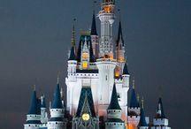 Disney World - Adults