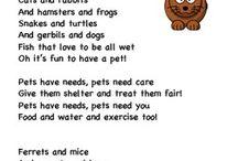 Pet theme
