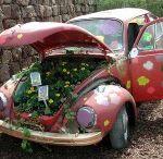 Garden365 - You Know You Love to garden when... / The crazy lengths we go to for our gardens!