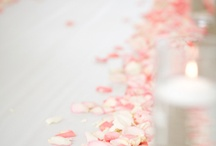 Petal Pink Wedding Design