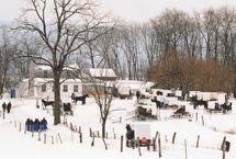 Not Quite Amish: Community