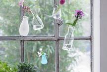 Reuso de vidros