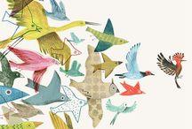 Pájaros ilustrados