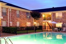 Houston apartments for rent / The best apartments to rent in Houston, TX!