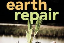 heal mother earth