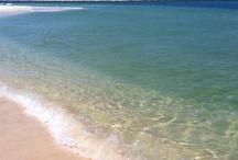 Alabama Gulf Coast / Beautiful Alabama Beaches / by Emily Stowe