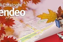 Autunno / L'autunno è la stagione dell'anno durante la quale le strade si riempono di foglie. Non aggiungiamoci anche i cataloghi cartacei, consultali online.